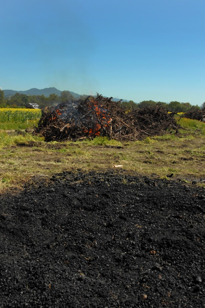 A beautiful pile of char in the foreground with a burning pile in the background.