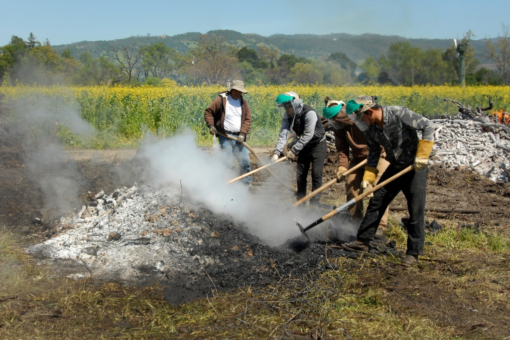 Workers rake and hoe the biochar as water is used to save the carbon (biochar).