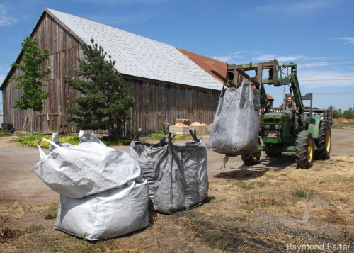 Riley of Green String Farm unloads the last bag of biochar to be used in their field trial. They plan to blend the biochar with compost and spread it in a 1/4 acre plot in the next few weeks.